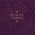 Glass_Animals____5729b9b7b6b7b.jpg